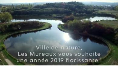 Voeux 2019 Les Mureaux
