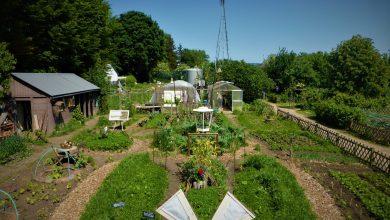 Jardin Michel Cognard Les Mureaux